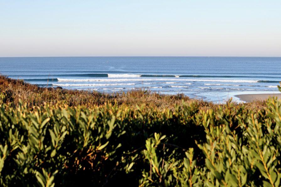Ancora surfen