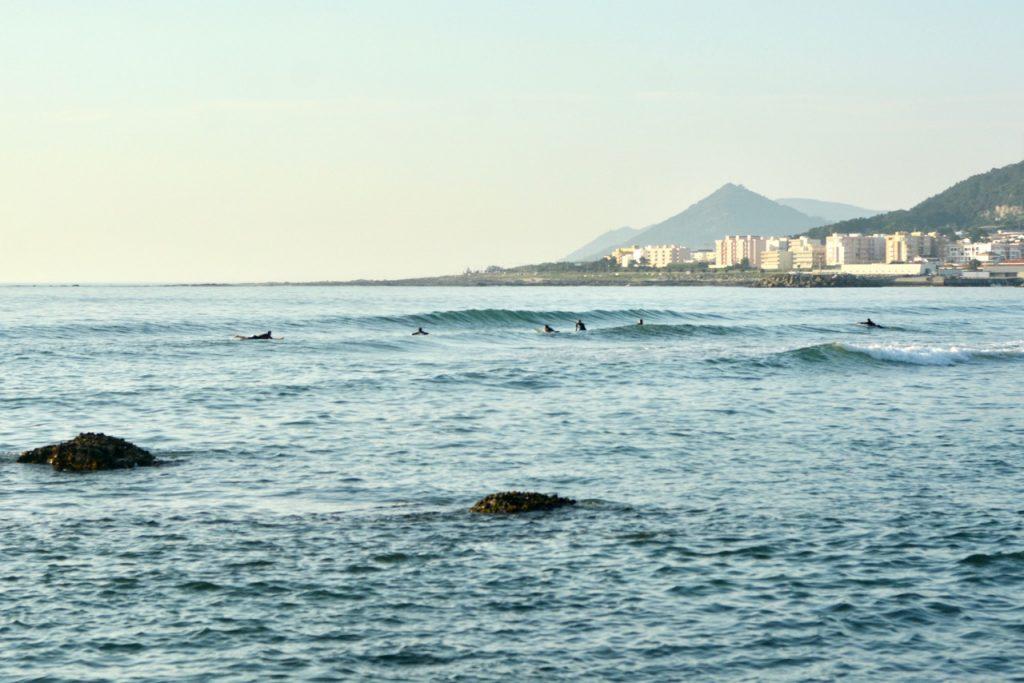Surfen im Surfcamp