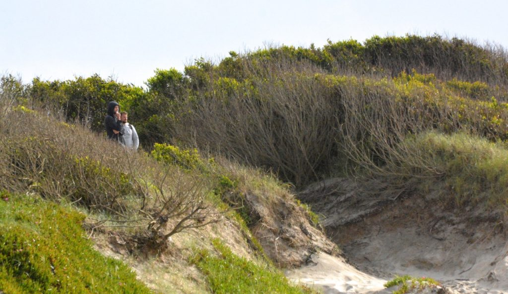 Die Umgebung Goodtimes Surfcamp
